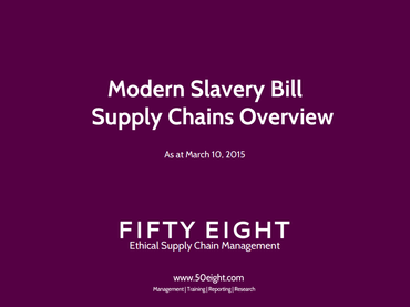 Modern Slavery Bill Supply Chains overview
